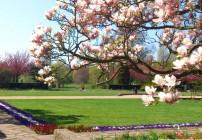 Primavera em Berlim. Berlim além das áreas turísticas