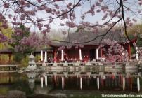 Gärten der Welt - Jardins do Mundo