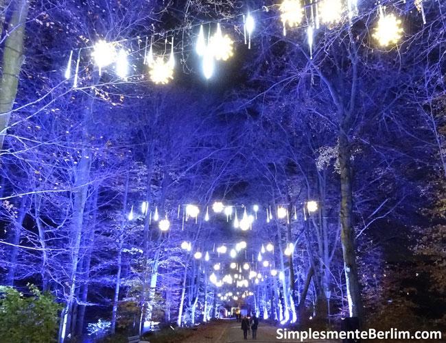 ChristmasGardenBerlimJardimBotanico_CaminhoLuzesAzuis