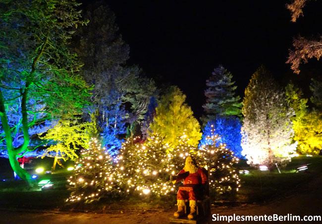ChristmasGardenBerlimJardimBotanico_PapaiNoel