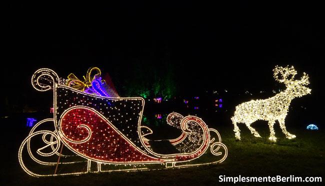 ChristmasGardenBerlimJardimBotanico_TrenoERena