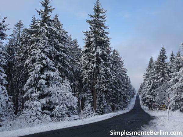 OndeEsquiarNasImediacoesDeBerlim_Erzgebirge
